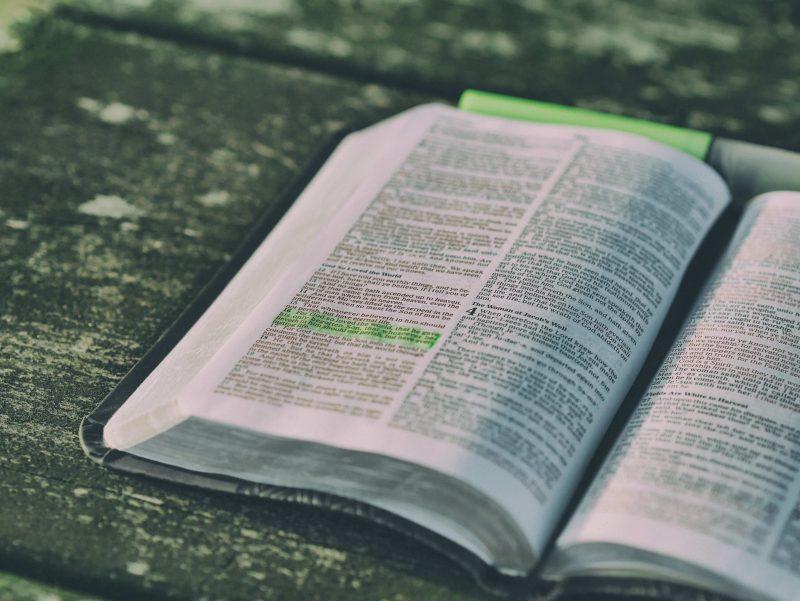 【翻訳の独学】基礎におすすめの教材は「翻訳の泉」と「英文翻訳術」